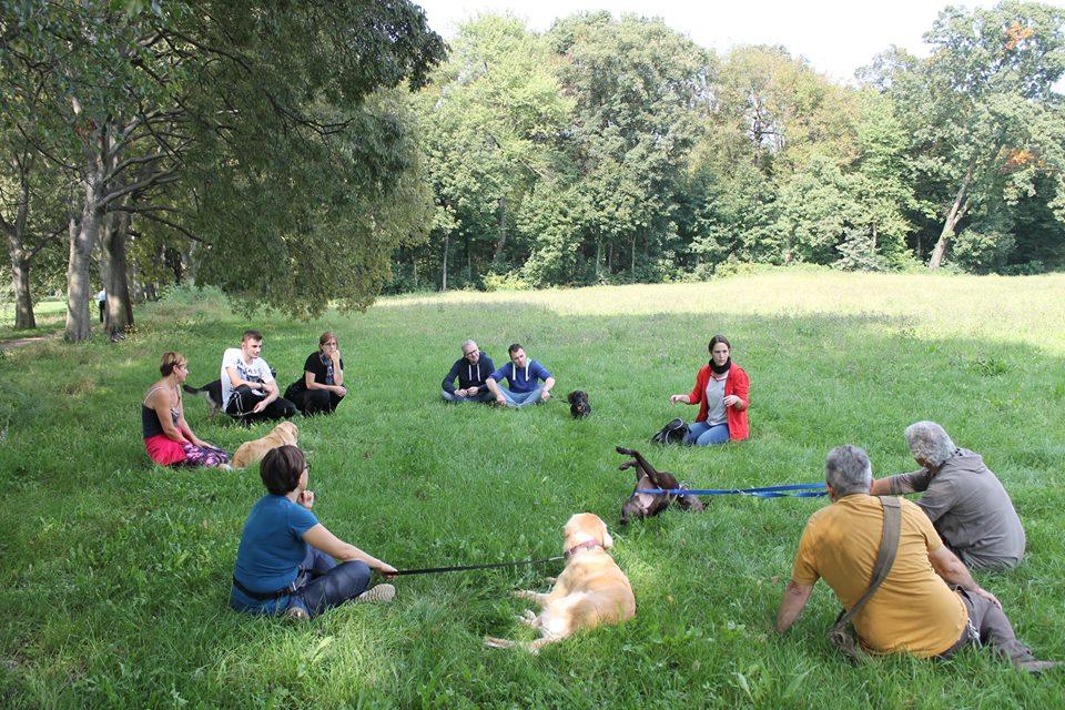 "http://www.eteamdog..it/le-nostre-lezioni-di-gruppo.jpg"" alt=""Le nostre lezioni di gruppo """